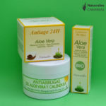 Aloe Vera Anti-Aging